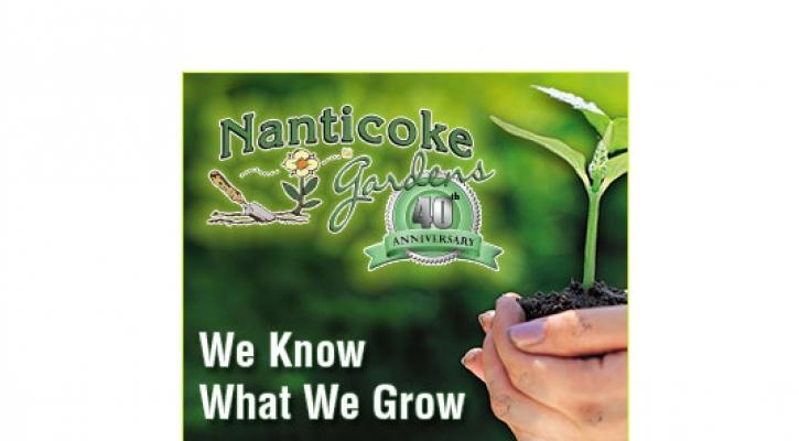 Nanticoke-300x250-Web-Banner.jpg